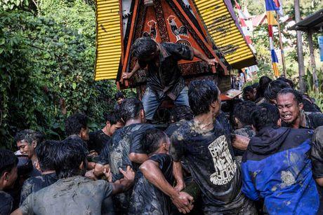 Nghi le mai tang cua bo toc Torajan o Indonesia - Anh 3