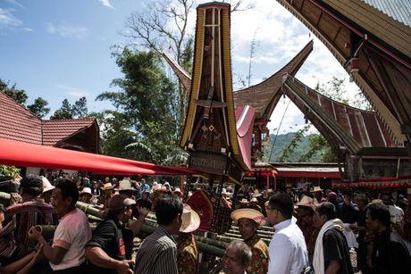 Nghi le mai tang cua bo toc Torajan o Indonesia - Anh 4