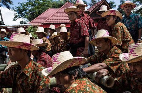 Nghi le mai tang cua bo toc Torajan o Indonesia - Anh 6
