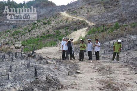 Phu Yen: Ky luat canh cao hang loat can bo huyen - Anh 2