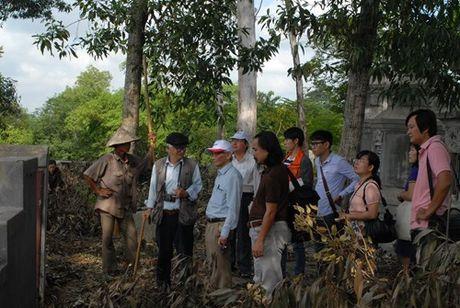 Tham do khao co dau vet lang mo vua Quang Trung - Anh 1