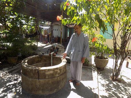 Thuc hu kho vang 'khung' duoi goc cay coc chua Hoa Tien - Anh 1
