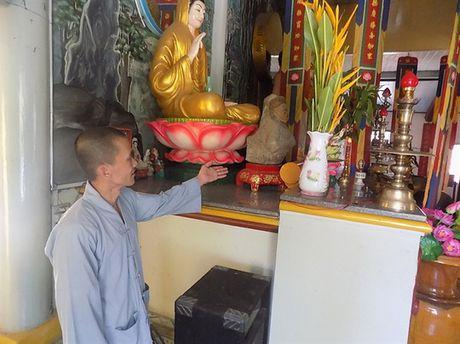 Thuc hu kho vang 'khung' duoi goc cay coc chua Hoa Tien - Anh 2