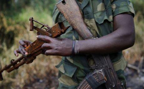 Tan cong dam mau, 22 binh si Niger thiet mang - Anh 1
