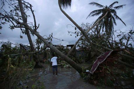 Hinh anh kinh hoang sau khi bao Mathew can quet Haiti - Anh 4