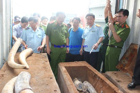 Lanh dao Tong cuc Canh sat va Tong cuc Hai quan thi sat vu bat giu hon 2 tan nga voi - Anh 5
