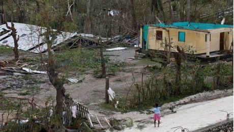 Bao kinh hoang tan pha Haiti, 261 nguoi thiet mang - Anh 3