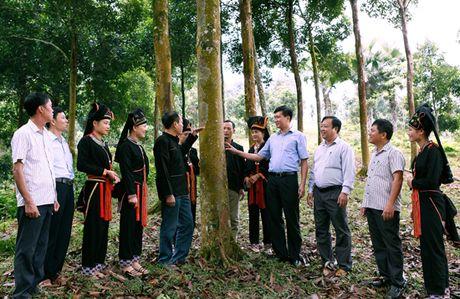 Ngot ngao huong que Van Yen - Anh 1