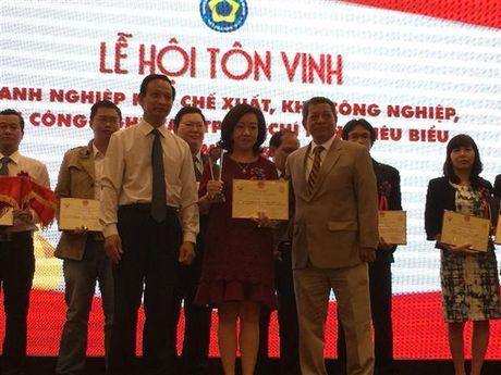 TP.HCM: Ton vinh 54 danh nghiep tieu bieu nam 2016 - Anh 1