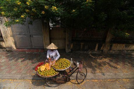 Anh nu cuoi thu Ha Noi doat giai dac biet tai Canon PhotoMarathon 2016 - Anh 7