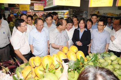 Thu tuong Nguyen Xuan Phuc khuyen khich mo hinh cua Co.opmart - Anh 1