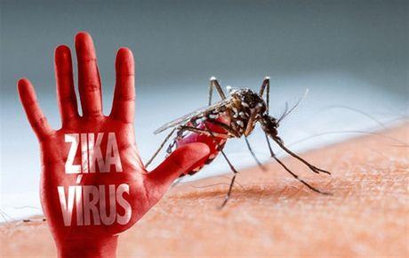 Hai phu nu mien Dong Nam bo nhiem virus Zika - Anh 1