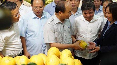 Chum anh: Thu tuong Nguyen Xuan Phuc di sieu thi, mua gio, kiem tra suat an cong nghiep - Anh 4