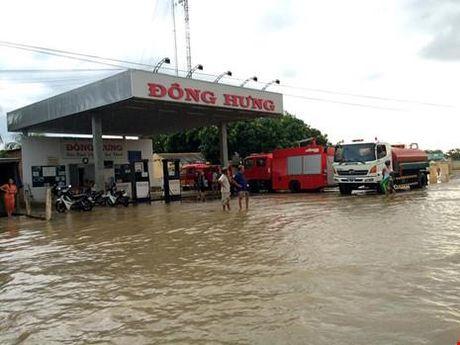 Binh Thuan: Thuy dien Dai Ninh xa lu ngap dau dan - Anh 2