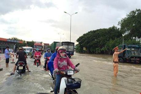 Binh Thuan: Thuy dien Dai Ninh xa lu ngap dau dan - Anh 5