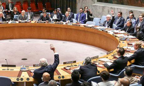 Nga bac nghi quyet cua LHQ ve ngung nem bom Aleppo - Anh 1