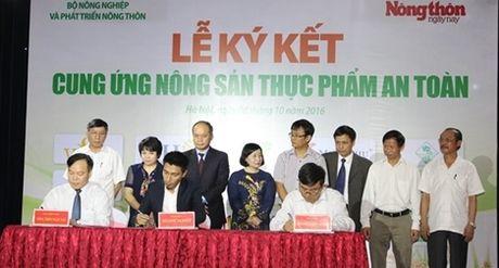 15 tap doan, doanh nghiep lon ky cam ket cung ung nong san an toan - Anh 1