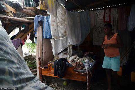 Canh hoang tan va chet choc o Haiti sau con bao lich su Matthew - Anh 15