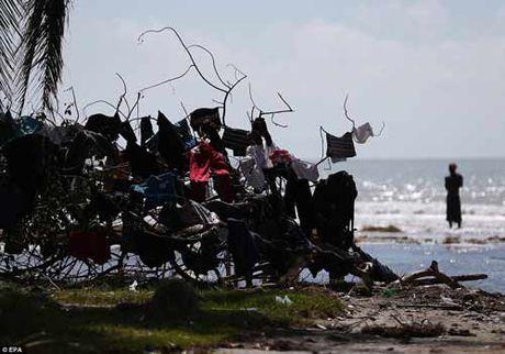 Canh hoang tan va chet choc o Haiti sau con bao lich su Matthew - Anh 7