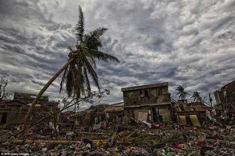 Canh hoang tan va chet choc o Haiti sau con bao lich su Matthew - Anh 9