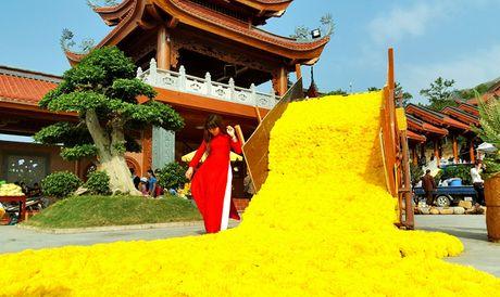 Hang van nguoi tham gia 'Le hoi hoa cuc' - Anh 13