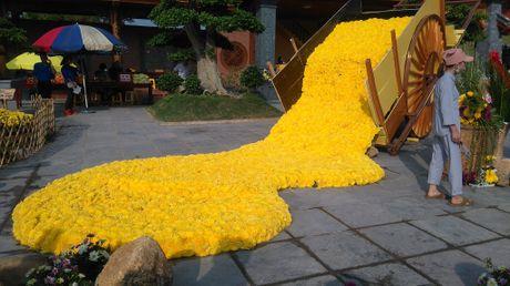 Chen chan xem cap chim cong 'khung' lam tu hoa cuc - Anh 10