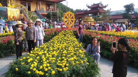 Chen chan xem cap chim cong 'khung' lam tu hoa cuc - Anh 4