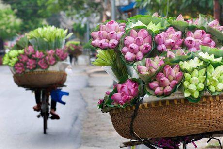 Nhung ly do khach Tay 'phai long' o Ha Noi - Anh 1