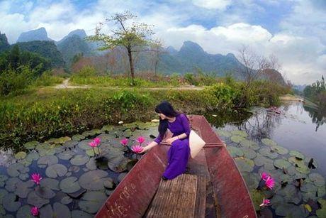 Nguoi Ha Noi no nuc len suoi Yen chup anh voi thien duong hoa sung - Anh 7