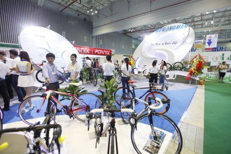Trien lam xe hai banh Vietnam Cycle 2016 chuan bi dien ra tu 17-19/11 tai Ha Noi - Anh 3