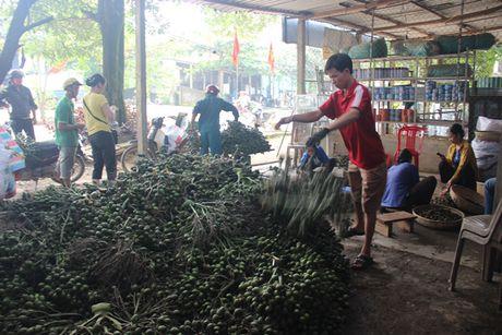 Lai o at tan thu cau non ban cho thuong lai Trung Quoc - Anh 4