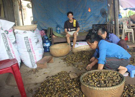 Lai o at tan thu cau non ban cho thuong lai Trung Quoc - Anh 6