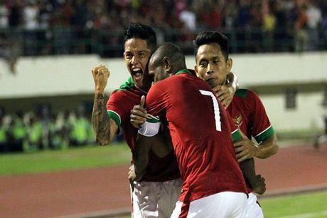 Bao gioi Indonesia khang dinh doi nha may man hoa Viet Nam - Anh 1