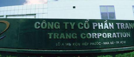 TFC: giam soc ke hoach loi nhuan - Anh 1