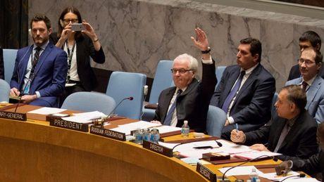 Vi sao Lien hop quoc bac hai du thao nghi quyet ve Syria? - Anh 1