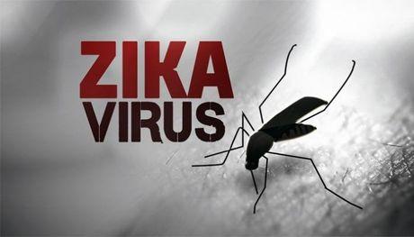 TP.HCM: Tang cuong kiem soat khu vuc co benh nhan nhiem Zika - Anh 1
