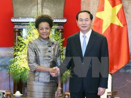 Viet Nam danh gia cao chu de Hoi nghi cap cao Phap ngu lan thu 16 - Anh 1