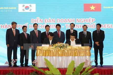 Han Quoc la nha dau tu lon thu 4 tai Thanh pho Ho Chi Minh - Anh 1