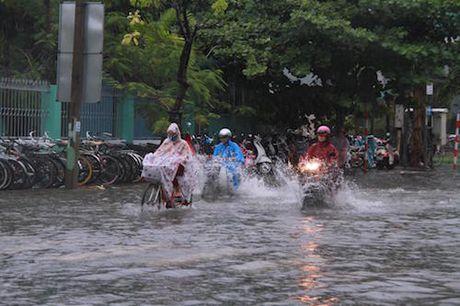 Thanh Hoa - Thua Thien Hue sap mua to - Anh 1