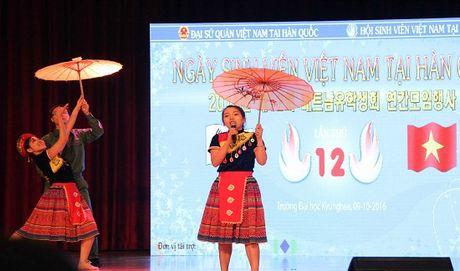 Tung bung ngay hoi Sinh vien Viet Nam tai Han Quoc lan thu 12 - Anh 1