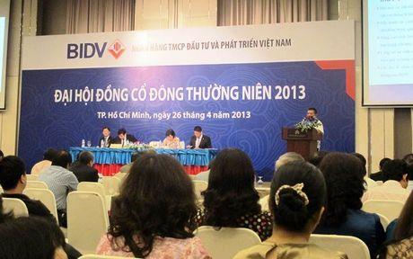 Ngay 22-10 BIDV hop dai hoi dong co dong bat thuong - Anh 1