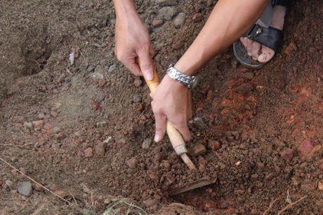 Thay gi khi khai quat khu vuc mo vua Quang Trung - Anh 5