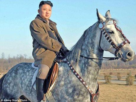 Ong Kim Jong-un vang mat kho hieu tai cac su kien lon - Anh 1
