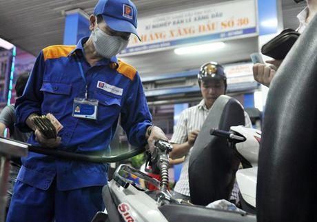 Viet Nam co the ban 9 loai xang khong chi - Anh 1