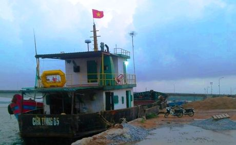 Chim tau o bien Quang Tri: Trach nhiem thuoc ve ai? - Anh 2