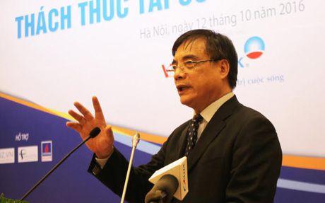 Tai co cau kinh te Viet Nam va cu 'ha canh' cua Trung Quoc - Anh 1