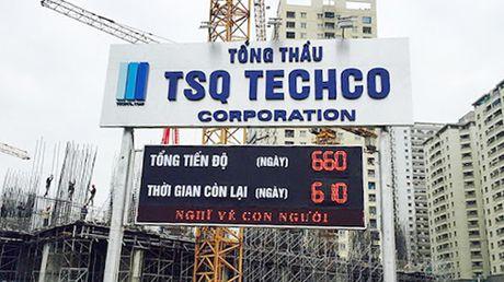 Hang loat cong ty bat dong san nam trong danh sach no thue, phi - Anh 1