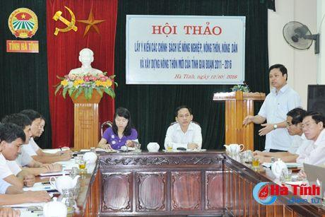 Gop y sua doi, bo sung chinh sach phat trien 'tam nong' - Anh 1