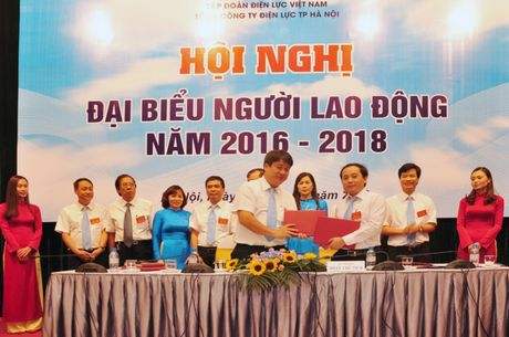 Hoi nghi dai bieu Nguoi lao dong EVN Ha Noi nam 2016 - Anh 2