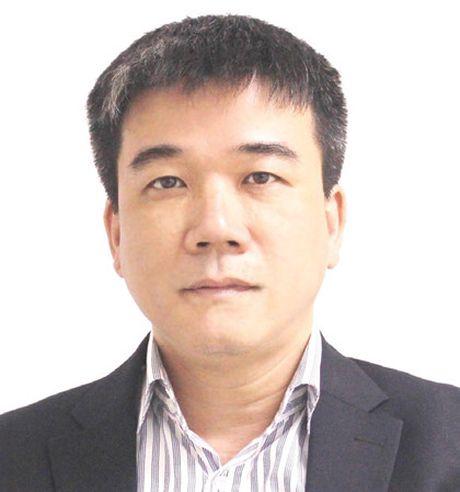 "Pho tong thu ky IAV: ""Cac doanh nghiep bao hiem thuc su co noi luc"" - Anh 2"